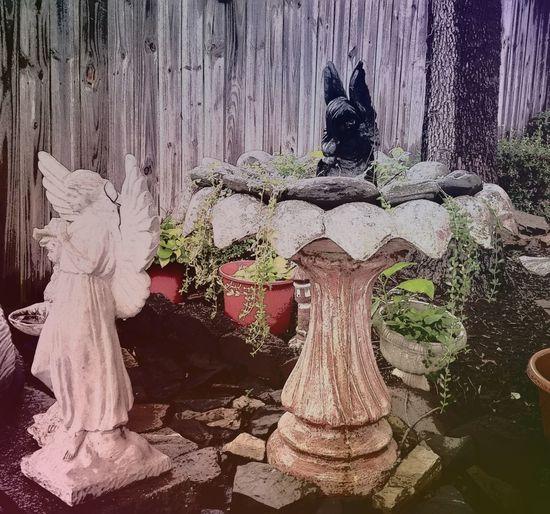 Art And Craft Sculpture Statue Day Nature This Morning After The Rain ~ Garden Photography Angel Statues Secret Garden Aunt Ester's Garden