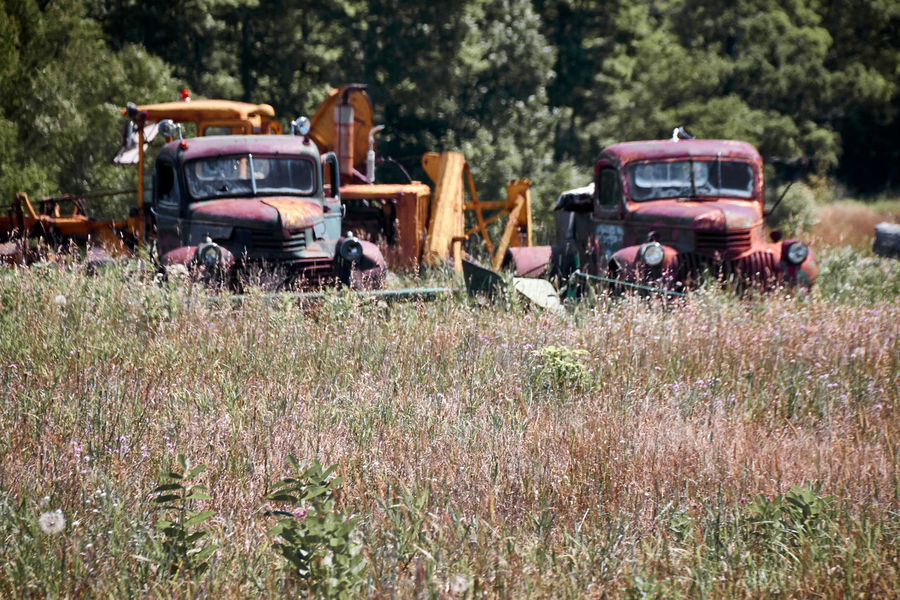 Abandoned Car Damaged Day Field Grass Land Vehicle Mode Of Transport No People Obsolete Old-fashioned Outdoors Summer Transportation