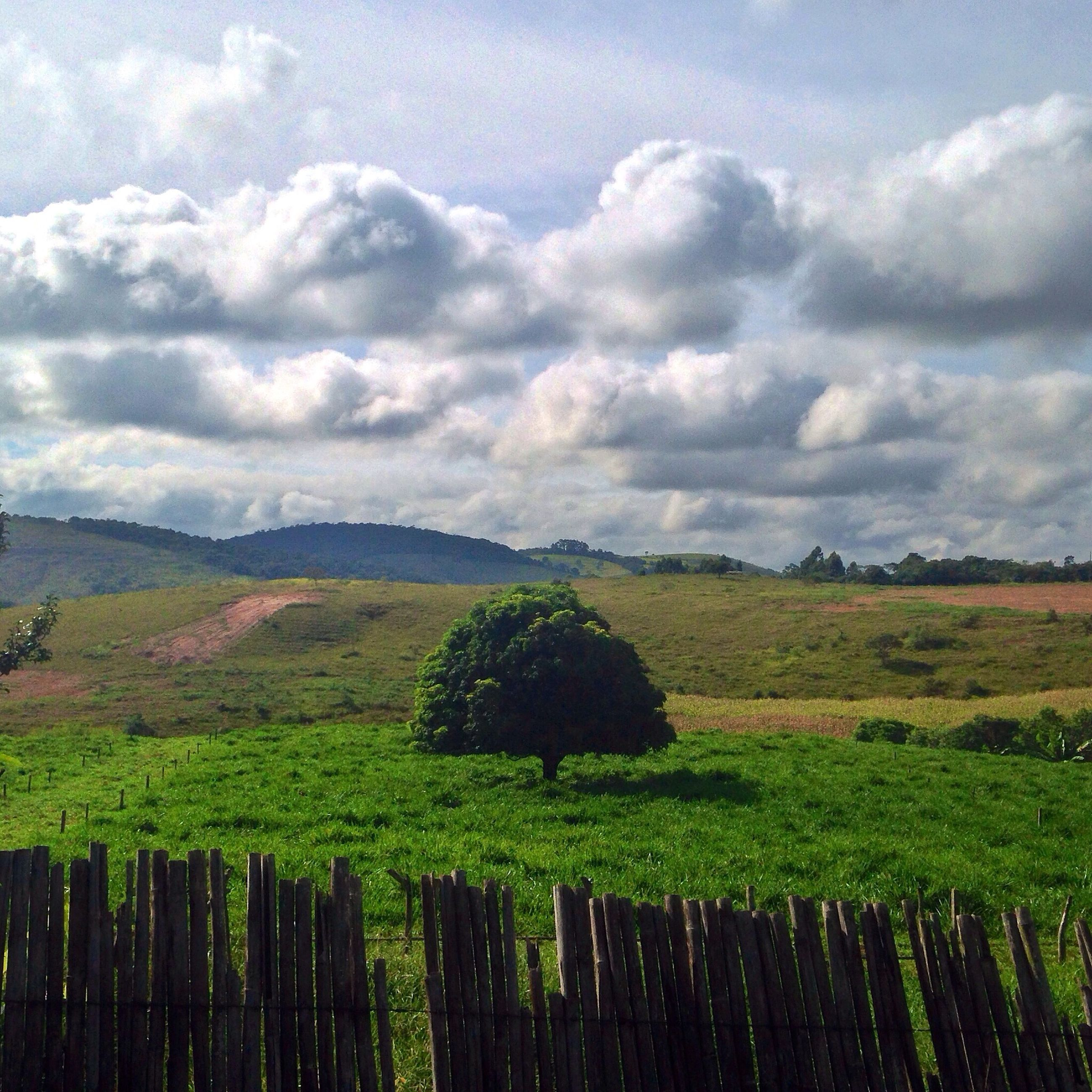 sky, tranquil scene, landscape, tranquility, field, cloud - sky, scenics, beauty in nature, rural scene, nature, tree, growth, cloudy, grass, cloud, agriculture, fence, mountain, green color, farm
