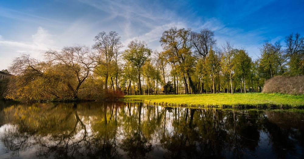 Reflection Tree Plant Water Sky Beauty In Nature Tranquility Tranquil Scene Lake Scenics - Nature Nature No People Green Color Day Cloud - Sky Non-urban Scene Grass Growth Outdoors