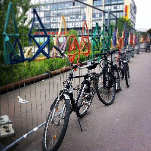 Мы в Дрездене. Здесь полно велосипедов, нет метро, зато суперсовременные трамвайчики.