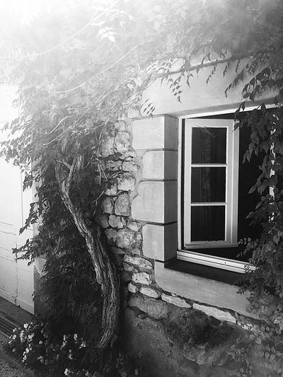 France Gite Built Structure Building Exterior Architecture Window Building Tree Plant Outdoors Nature Old
