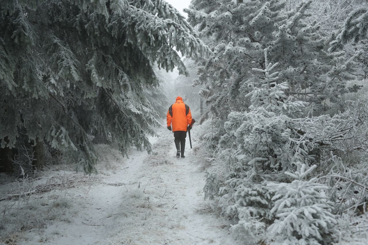 REAR VIEW OF A PERSON STANDING ON SNOW