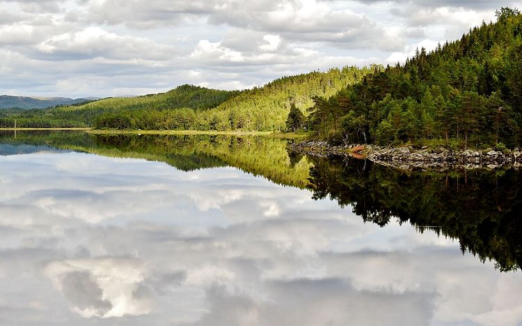 Beauty In Nature Cloud - Sky Day Forest Green Color Growth Lake Landscape Mountain Nature No People Outdoors Reflection Scenics Sky Tranquil Scene Tranquility Tree Water Waterfront