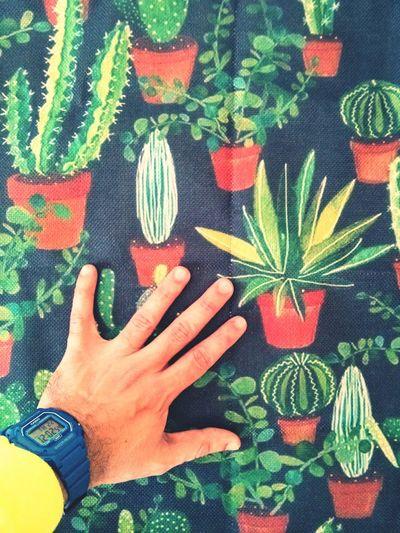 Cactus Print 🌵 Cactus Cactus Collection Decomuebles Fundacojin Decointeriores Cactusprint Decoracioncontelas Decoraciondein#diy Hazlotumismo Decoracionnaturaleza Colorverde Human Hand Flower Leaf Multi Colored Nail Polish Close-up Green Color First Eyeem Photo