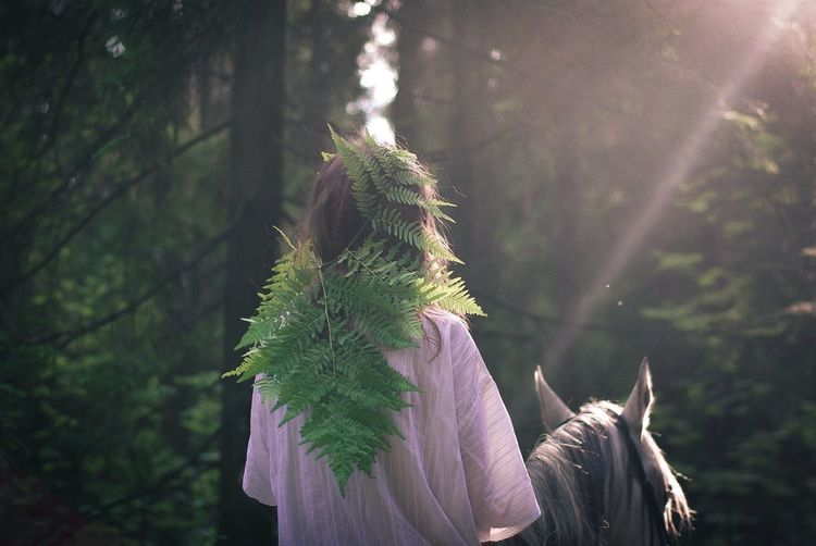Rear view of woman on plant in forest