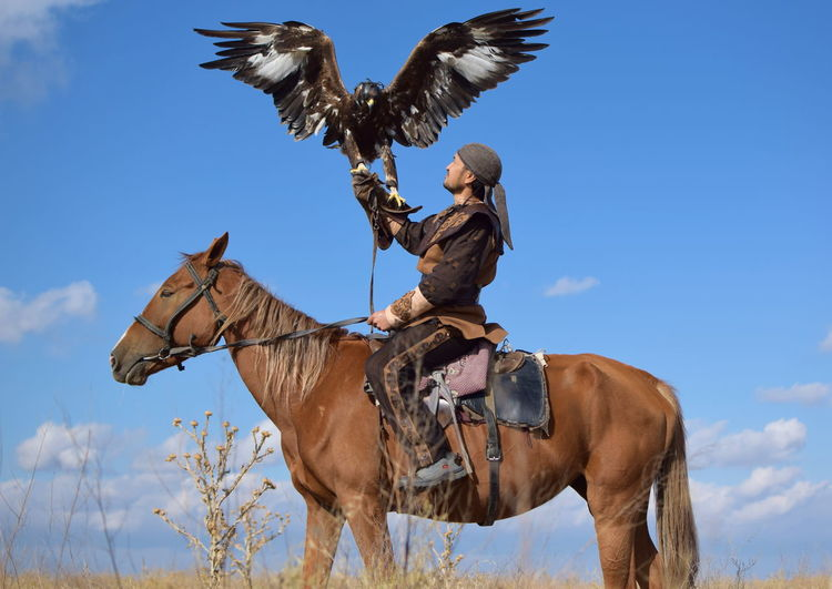 Eagle Hunter Eagle Eagle Hunter Falcon Falconry Kazakhstan Eaglephotography Golden Eagle Horse Horseback Riding Riding first eyeem photo Fresh On Market 2018