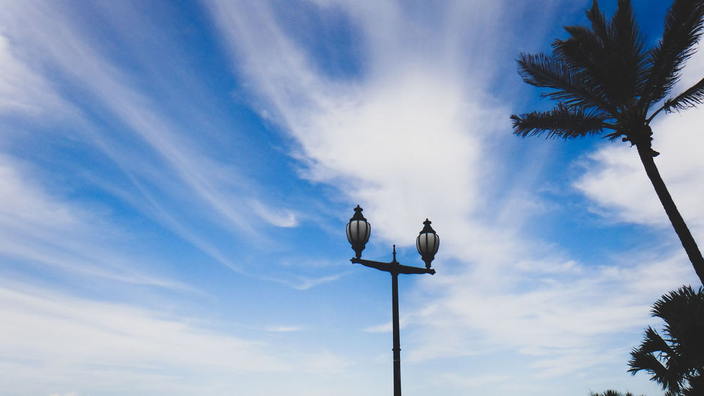Blue Blue Sky Cloud - Sky Day Lamp Post Low Angle View Nature No People Outdoors Palm Tree Sky Street Lamp Tree Welcome To Black Art Is Everywhere