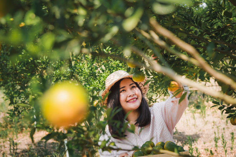 Smiling woman harvesting citrus fruit at farm