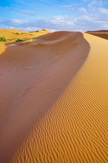 Sahara Desert, Morocco Land Sand Landscape Scenics - Nature Sand Dune Desert Environment Climate Tranquil Scene Arid Climate Beauty In Nature Non-urban Scene Tranquility Day Nature Sky No People Cloud - Sky Remote Horizon Over Land Outdoors Sahara Desert Morocco Summer