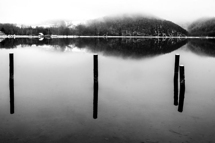 Lake Eyeem Market Black & White Deep Water Life Nature Beauty In Nature Elements Of Nature Foggy Mirror Reflection Simplicity Stakes Tranquil Scene Water Woodtrunks