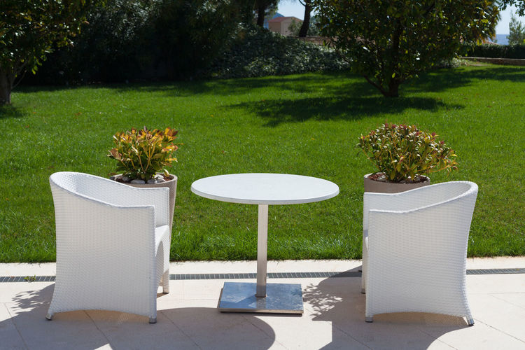 Chairs and tables against trees