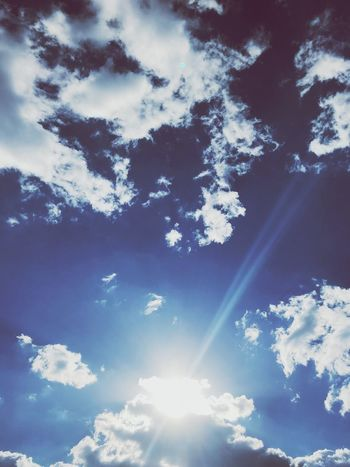 Sun&sky Cloud - Sky Sky Low Angle View Beauty In Nature Tranquility Nature Tranquil Scene Sunlight Blue Outdoors Sun Plant