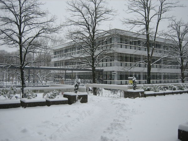 Photos of Karlsruhe, Germany 2007 Architecture Bare Tree Building Exterior Built Structure City Cold Temperature Day Nature No People Outdoors Residential Building Snow Snow ❄ Snowing Stationary Tree Weather Winter Winter Winter Trees Winter Wonderland Wintertime Winterwonderland