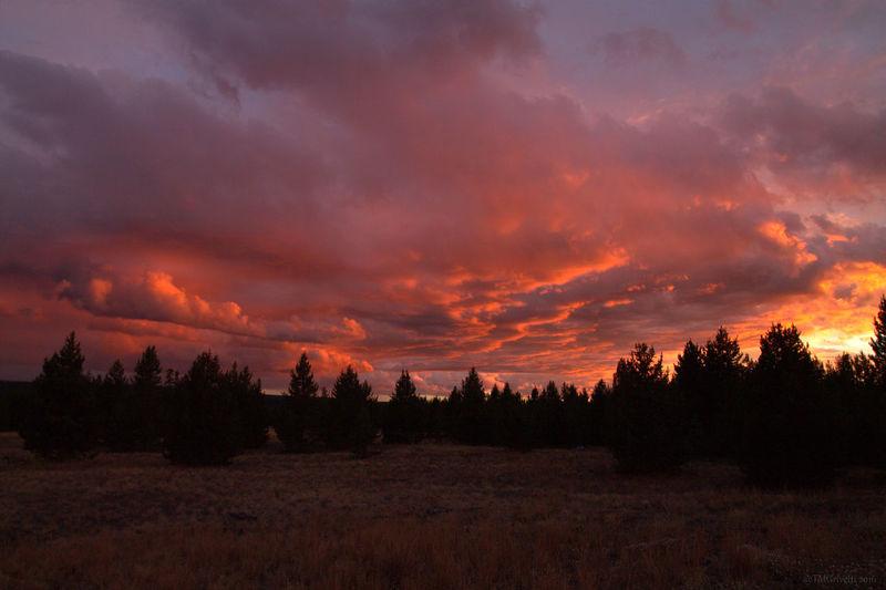 Sunset sky in