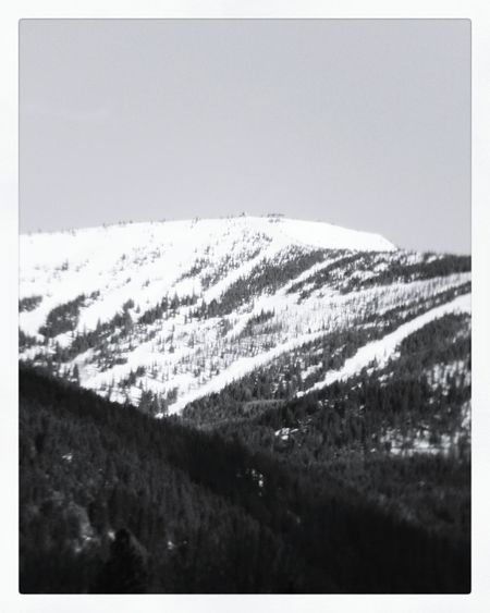 Snow Landscape Nature Winter No People Mountain Outdoors Day Sky Schweitzer Mountain Sandpoint Ponderay