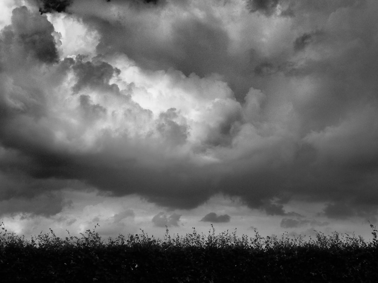 cloud - sky, sky, field, weather, nature, cloudscape, landscape, outdoors, storm cloud, scenics, beauty in nature, tranquility, no people, day, tranquil scene, agriculture, rural scene, grass, tree, thunderstorm