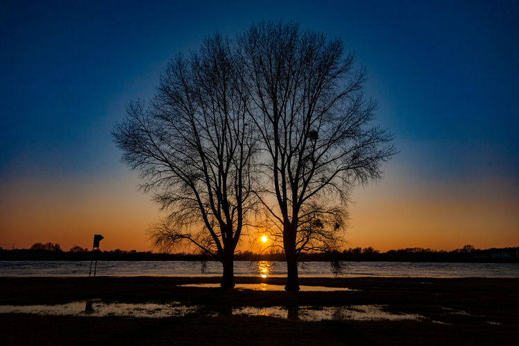 Silhouette bare tree by sea against clear sky during sunset