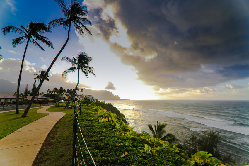 Stormy sunset on Hanalei horizon Green Color Plants Way Of Life Beauty In Nature Cloud - Sky Condominium Growth Horizon Over Water Nature No People Outdoors Palm Tree Princeville Saturated Colours Scenics Sea Sky Sunset Tranquil Scene Tree Water