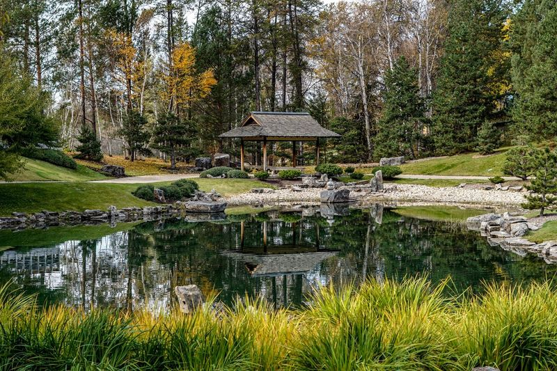 Gazebo in the fall Photography416 Water Plant Lake Tree Reflection Architecture Nature Built Structure Growth Green Color No People Garden Formal Garden Beauty In Nature Park Tranquility Outdoors Grass