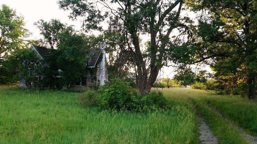The Following Countryside Small Town Exploring New Ground The Great Outdoors - 2016 EyeEm Awards Taking Photos Kansas Country Life Kansasphotographer No Filter, No Edit, Just Photography Sunrise Nature Taking Over Again Old Buildings Abandoned Little Town Kansasoutdoors Farm House Backwoods