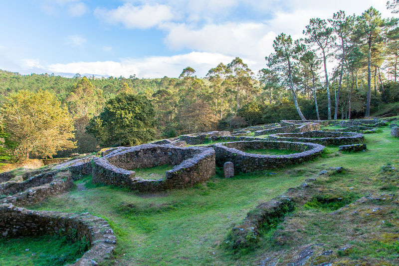Ancestors Ancient Architecture Ancient Civilization Ancient Culture Archeological Complex Archeology Architecture Castro Day Forest Forest Photography Galicia, Spain Grass Growth Landscape Nature No People Old Old Village Outdoors Remote Location Ruins Scenics Sky Tree