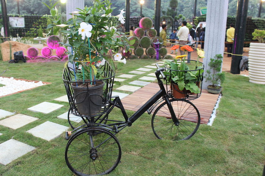 Bicycle Flower Day Outdoors Transportation Green Color Nature No People Growth Grass Bicycle Rack Beauty In Nature