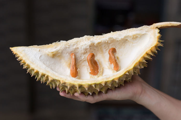 Close-up of hand holding tropical fruit