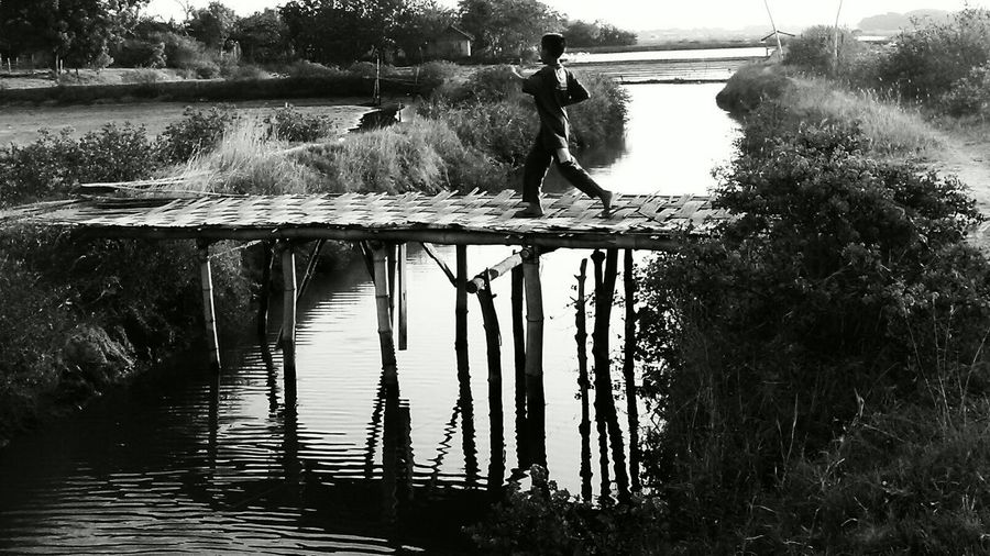 a Bridge from Bamboo , Black And White, Light And Shadow, Light And Dark, Doubt...