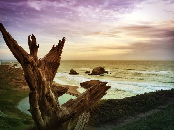 Land's End San Francisco IPhoneography Landscape Nature Madewithfaded Travel California Sea