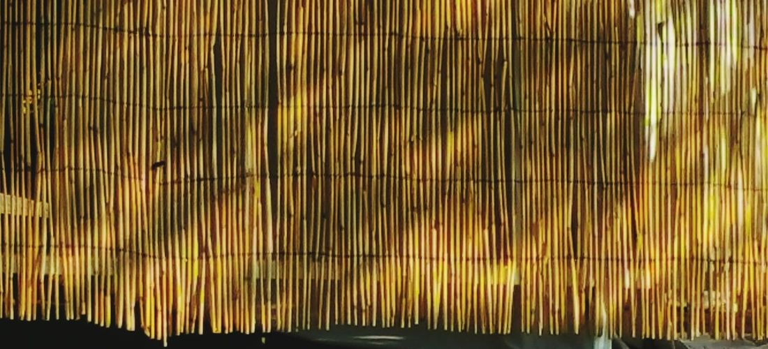 Pattern Pieces Bamboo Fence Tan Golden Linear Bamboo Simple Beauty Communing With Nature Walking Around