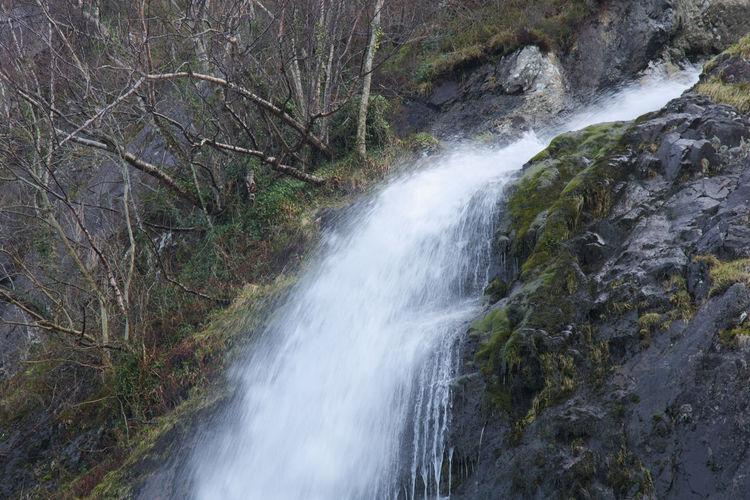 Tree Water Waterfall Motion Long Exposure Spraying Flowing Water Flowing Power In Nature Falling Water Force Splashing
