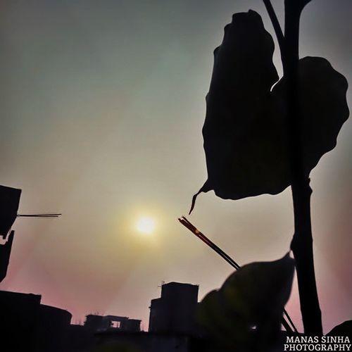 Sunshot AwespiringSunset