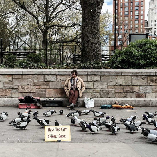 NEw York City Nature Scene Art Artist Spring2015 Street Photography Manhattan NYC Timyoungiphoneography