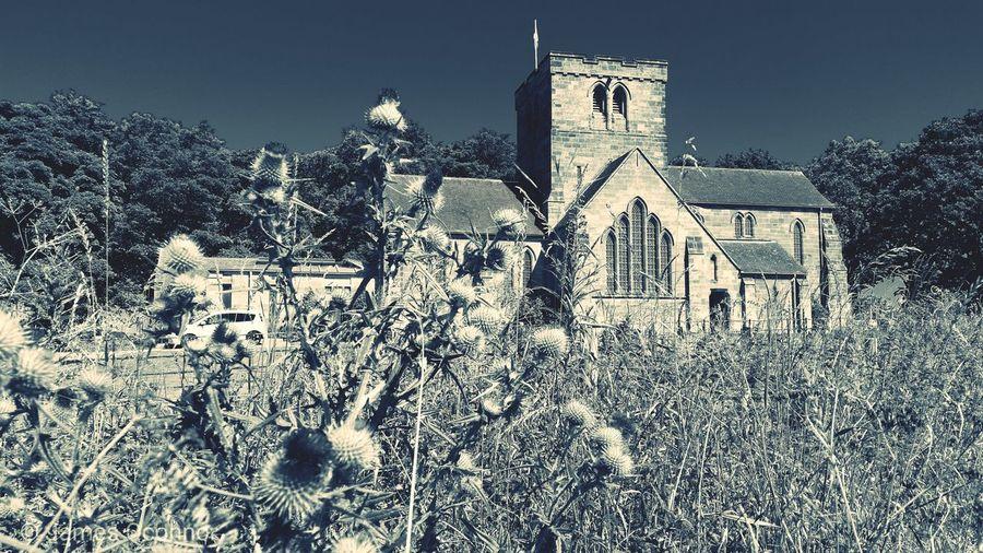 St Marys.