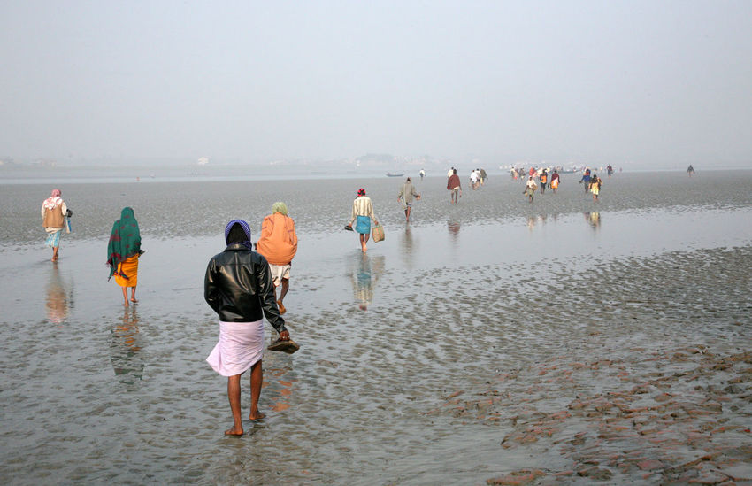 During low tide the water in the river Malta falls so low that people walk to the other shore in Canning Town, India on January 17, 2009. Canning Canning Town Coast Ebb India Large Group Of People Low Low Tide Malta River Men Mud People Person Shore Tidal Tide Town Walk Walking Water West Bengal