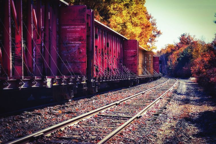Tree Railroad Track Transportation Rail Transportation No People Outdoors Day Sky Nature Architecture Autumn New England  New Hampshire Vibrant