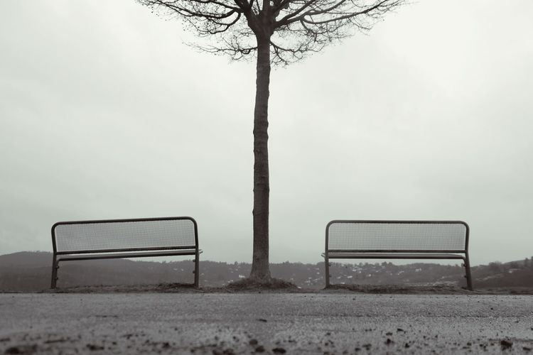 benches with a view Bench Benches Edersee Germany Tree Tree Trunk Blackandwhite Foggy Morning My Point Of View My Place To Relax Sky Foggy Weather