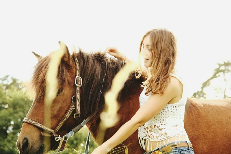 Horse Riding Young Adult Horse Photography  Shooting Portrait Of A Woman Ridingwoman Icelandic Horse Photoshoot Horseshooting Indian Summer Cowgirl Riding Girl Riding Girl Horseriding Islander