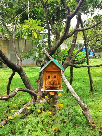 🐝🐝🐝 a bee hi--ouse. house. a bee house. || Nature Gardens Bee Farm Greens Bees Bees And Flowers Pilipinas
