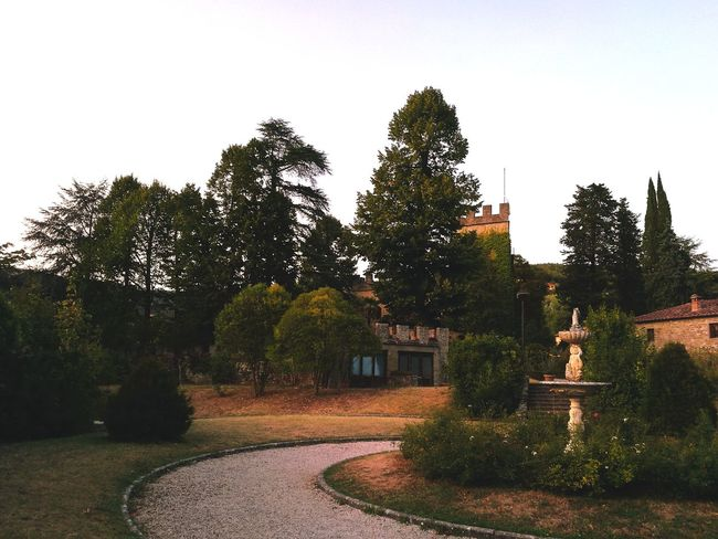 Stia Tree No People Outdoors Castle Garden Autumn Late Afternoon Light Stia Toscana Arezzo Architecture Day Built Structure Clear Sky