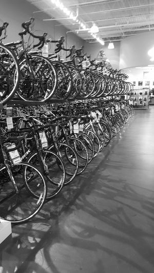 Everything In Its Place Shopping Bikes