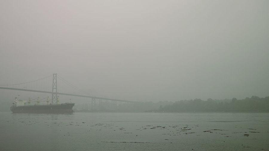 Stanley Park (Vancouver, Canada) Bridge Dp23 Harbour Nature Ship Sigma Stanley Park Streetphotography