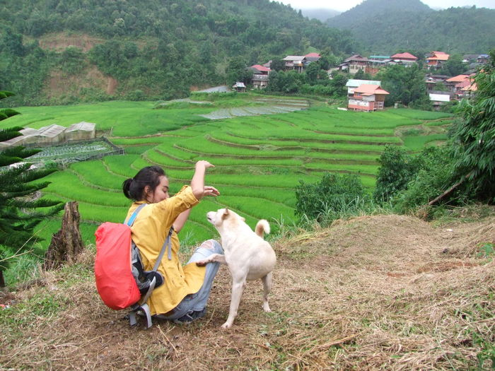 Woman With Dog On Field