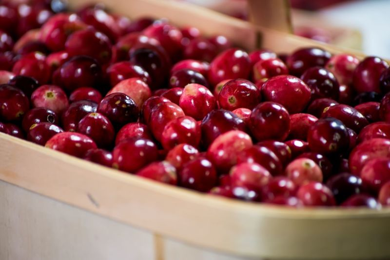 Close-up of cherries in bowl