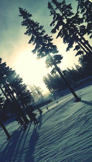 Where I wish I could be every day<3 Mount Washington, Canada