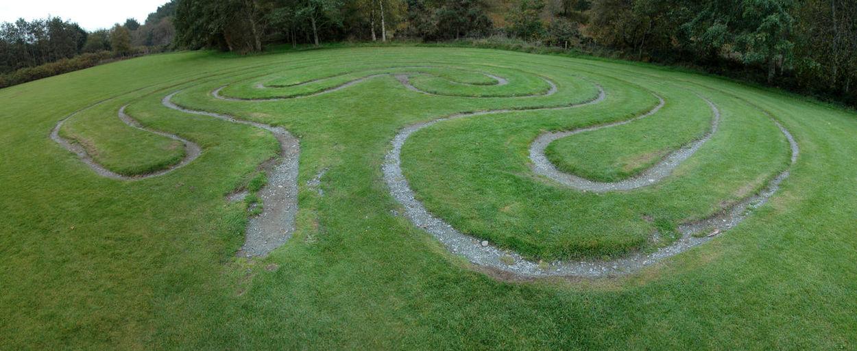 Maze on lawn
