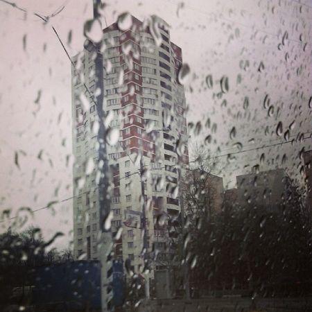 дождик свао отрадное