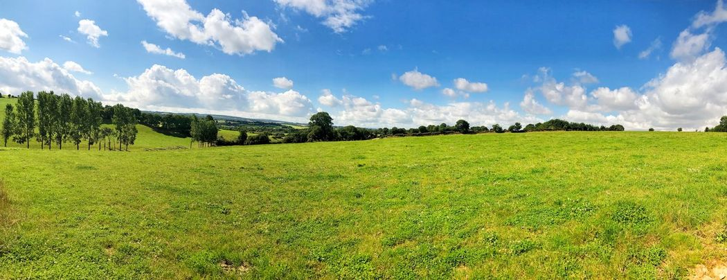 Brittany France Panorama Beauty In Nature Cloud - Sky Day Field Grass Green Color Growth Landscape Maël-carhaix Meadow Nature No People Outdoors Panoramic Scenics Sky Tranquil Scene Tranquility Tree