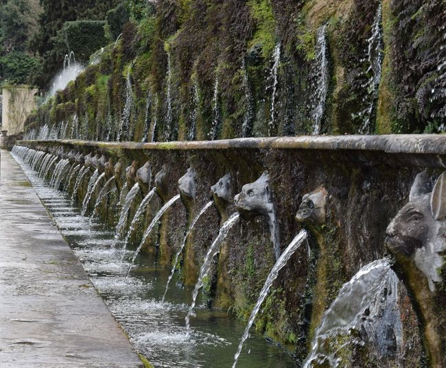 Beauty In Nature Built Structure Day Motion Nature No People Outdoors Plant Rock - Object Tree Villa D'Este Water Water Fall Waterfall Waterfront